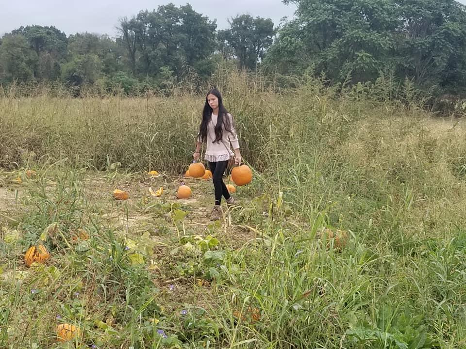pumpkin 2019 e