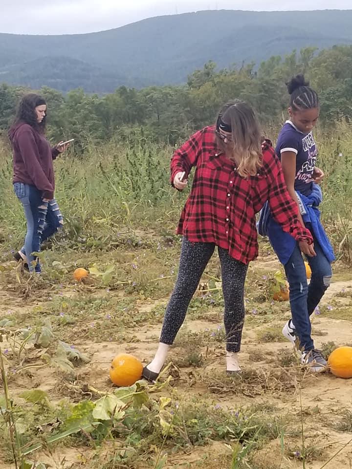 pumpkin 2019 g