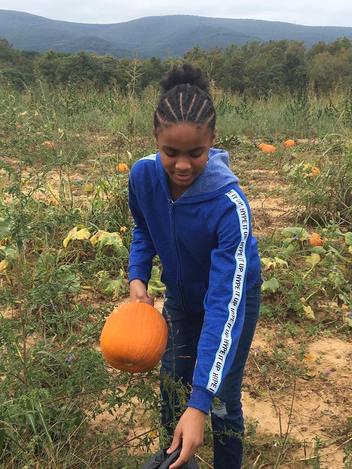 pumpkin 2019 n